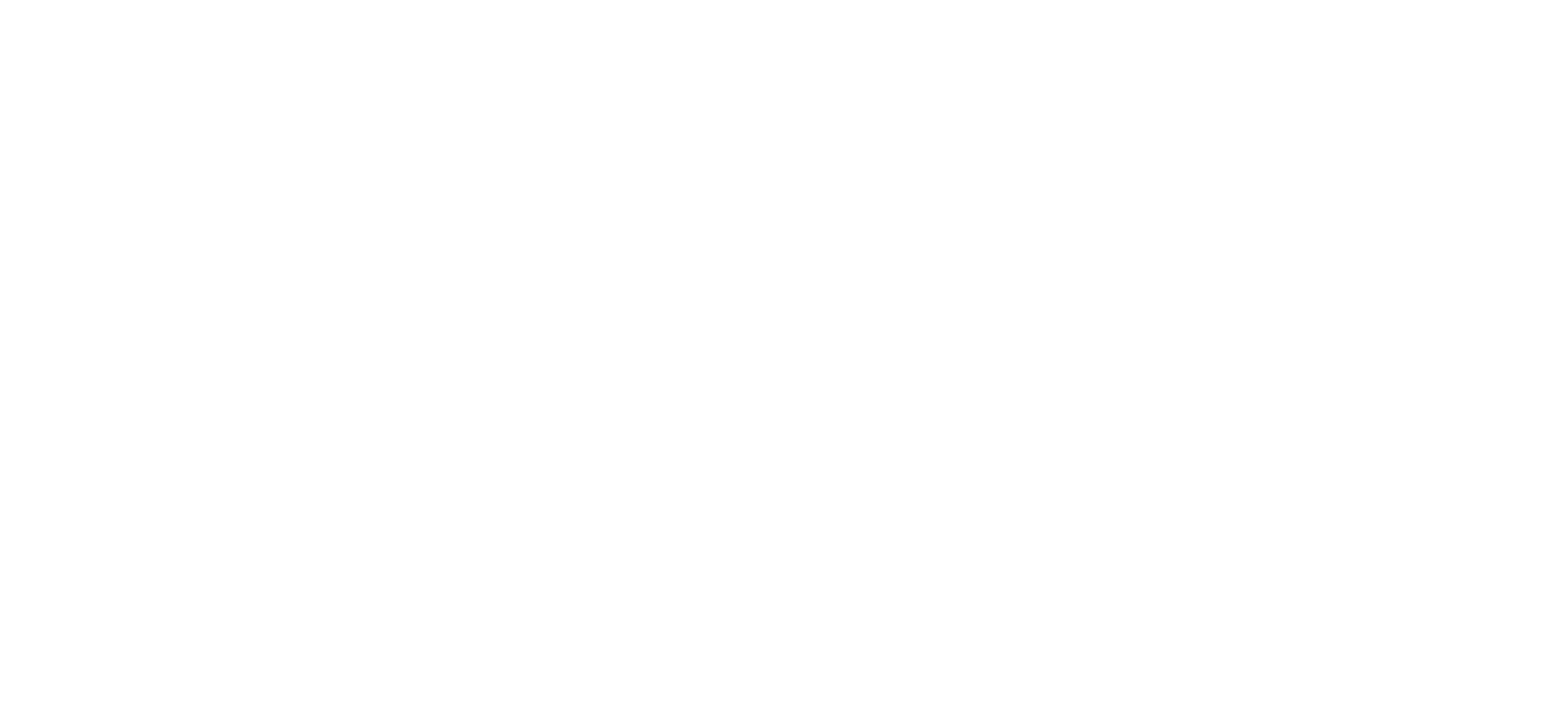 The Bridge 2020